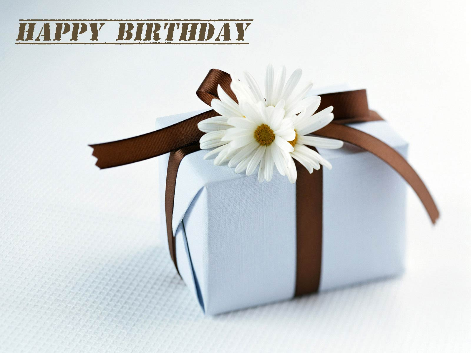 Lovely and Interesting Birthday Wishes That Can Make Your Sister-in-law Smile 2